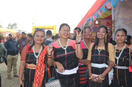 दमकमा 'चिचिरी–गेन्द्रो दिवस'