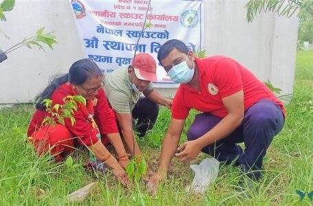 Tree planting at Shivasatakshi on 70th Scout Day