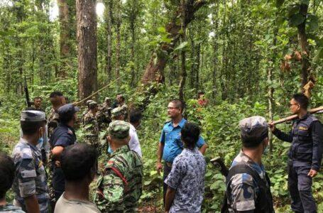 निउरो टिप्न गएकी महिलाको जंगली हात्तीले आक्रमण गर्दा मृत्यु